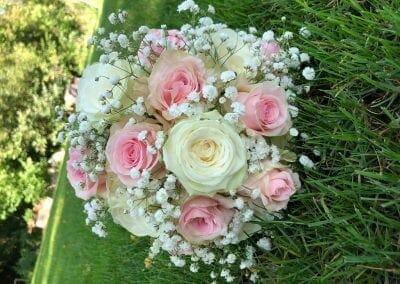 Nežne vrtnice